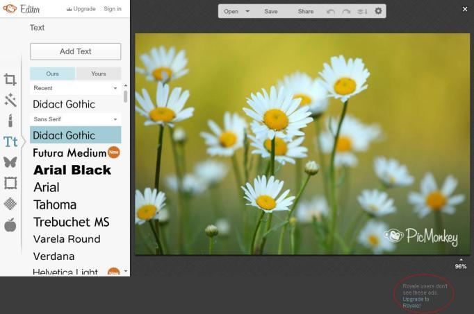 picmonkey editor gratis